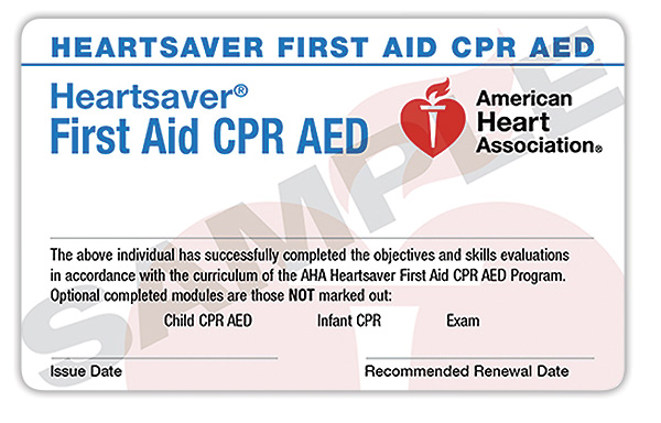 First Aid / CPR / AED Certification (2 of 2) | MI Firearms